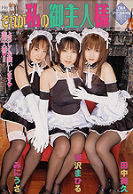Maid Cosplay Sex